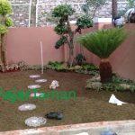 Tukang-Taman-Semplak-Bogor